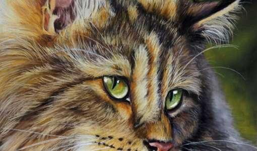 Tierporträt-Faszination der realistischen Malerei