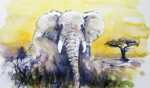 Reihe Zeichnen & Malen: Verschiedene Technikkombinationen für Natur- und Tierstudien