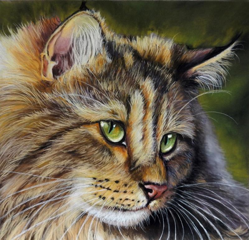 *Tierporträt - Faszination der realistischen Malerei mit Pastellen